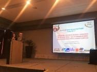 """Cuba organizó el Seminario Internacional sobre """"Adaptación, gestión de riesgos y desastres, de las carreteras y de las organizaciones de carreteras ante el cambio climático"""""""